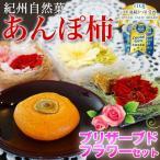 無添加 干し柿 紀州自然菓「あんぽ柿」11個入 国産ブリザーブドフラワーセット( 1つ70g以上) 送料無料 (fy8)