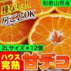 不知火(デコポン)ハウス栽培の完熟デコポン「甘デコ」!和歌山県産(送料無料)2Lサイズ12玉入(約3kg) 種なし・房ごとOK