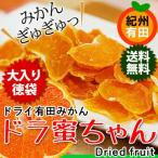 有田みかん ドライフルーツ 画像