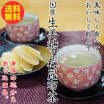 国産生姜糖70gと梅昆布茶30食!冷えから身体を守る美味しい温活シリーズ! (fy3)