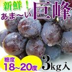 巨峰3kg(6〜9房入)<和歌山県 有田巨峰村の朝採り巨峰大変みずみずしく、甘さたっぷりコクのあるぶどう※種にご注意下さい。 (fy6)