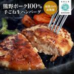 御歳暮 超早割 お歳暮 ギフト 和歌山の高級豚 熊野ポーク100%使用 手ごね生ハンバーグステーキ 5個入(ステーキソース付)冷凍生ハンバーグ