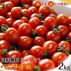 2019年ご予約開始!ミニトマトキャロルセブン2kg (送料無料) 減農薬、減化学肥料で育てたこだわりハウス栽培の美味しさ! (fy5)