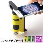 ハンディ顕微鏡DX 100〜250倍ズーム スマホ写真撮影 子供用 自由研究 自然観察ノートダウンロード配布中画像
