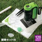 ショッピング自由研究 ハンディ顕微鏡ZOOM 観察セット RXTG2 子供用 自由研究に!手軽にスマホ撮影