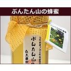 2019年産 はちみつ ぶんたん山の蜂蜜 3本 まとめ買い 文旦 ハチミツ