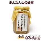 2021年産 はちみつ ぶんたん山の蜂蜜 5本セット 文旦 ハチミツ まとめ買い