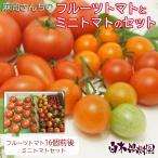 FT-ASET 麻岡さんちのトマト詰め合わせセット