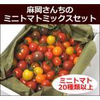 FT-MIX 麻岡さんちのミックストマトボックス