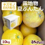 NB-K10 露地夏ぶんたんご家庭用 約10kg