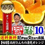 清見オレンジまとめ買い5kg×2箱  紀州有田豊作会 和歌山県みかんの里から