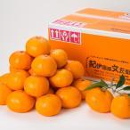 橘子 - 有田みかん5kg(サイズおまかせ) きのくにや認定生産者 すご腕みかん職人が仕上げる有田みかん