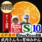 高糖度の有田みかん 武内さんちの有田みかん(Sサイズ)約10kg 厳選果実 特選ギフト品