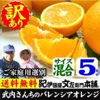 武内さんちの国産バレンシアオレンジ ご家庭用 サイズ混合 5kg