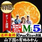 和歌山有田みかん 山下園の有田みかん 厳選ギフト (Mサイズ) 約5kg 正しくは「ありたみかん」ではなく、「ありだみかん」です。温州みかん