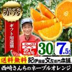 西崎さんちのネーブルオレンジ 特選ギフト (7.5kg 30玉) 和歌山有田産