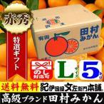 2021年1月出荷_田村みかん (特選)贈答用ギフト選別品(Lサイズ・5kg)1箱=約40果前後 和歌山みかん有田みかんの最高ブランド果実