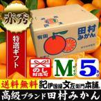 2021年1月出荷_田村みかん (特選)贈答用ギフト選別品(Mサイズ・5kg)1箱=約50果前後 和歌山みかん有田みかんの最高ブランド果実