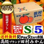 田村みかん (特選)贈答用ギフト選別品(Sサイズ・5kg)1箱=約60果前後 和歌山みかん有田みかんの最高ブランド果実