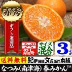 紀州有田みかんの里から・なつみ(南津海)みかん(特選品3kg)ギフト用・この果実は種があります/春みかん・春かんきつ