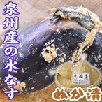 夏の味覚 泉州産 水なす(ぬか漬)1個入  冷蔵便 (高級食材 最高級)水ナス糠漬け