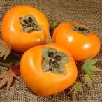 たねなし柿 約7.5kg L 36個入 赤秀  ながみね 種なし柿 種無し柿/平核無柿(ひらたねなし柿)紀州和歌山