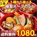 【送料無料】3種から選べる北海道.スープカレー 2食.極旨スパイシー風味/【sale2】【B】