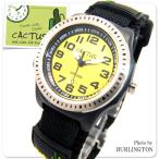 CACTUS カクタス 腕時計 キッズ 時計 子供 CACTUS腕時計 人気