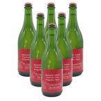 はすみふぁーむ 紅玉シードル6本セット 750ml×6 送料込 (沖縄別途1,060円)信州産 りんご酒 20歳未満の飲酒・販売は法律で禁止されています