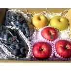 季節の果物「信州の旬」詰め合わせ(S) | フルーツ 詰め合わせ