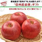 「信州フルーツ便」 ご家庭向け|シナノスイート 約5kg |送料込|信州産の旬のりんごを産地直送でお届けします。