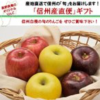 「信州フルーツ便」秋ギフト|3種類詰め合わせ 贈答用3kg(秋映・シナノスイート・シナノゴールド 8〜12玉) |信州産の旬のりんごを産地直送でお届けします。