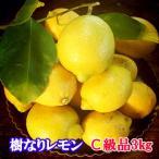 国産レモン 瀬戸田産 樹なりレモン C級品 3キロ 化学農薬不使用栽培