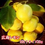 国産レモン 瀬戸田産 広島レモン 小粒S以下サイズ 5キロ 減農薬特別栽培