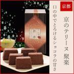 チョコレートケーキ ショコラ 京のテリーヌ 聚楽 1個 & セイロン紅茶 ティーバッグ 3種セット ギフト