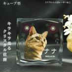 かわいいクリスタルペット位牌【ピュアラブ キューブ サイズB】【UV+2Dレーザー】犬の位牌 猫の位牌 ペット供養