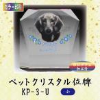 【カラー印刷】クリスタルペット位牌 KP-3-U (小)