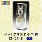 【カラー印刷】クリスタルペット位牌 KP-23-U (大)