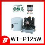 メーカー直送/日立 浅井戸用自動ポンプ WT-P125W