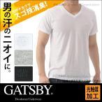 ギャッツビー GATSBY スゴ技消臭 VネックTシャツ 光触媒加工ガイアクリーン/インナー /メンズ/ビジネス