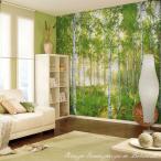 だまし絵 輸入壁紙 フリース不織布クロス 白樺林の風景写真 ドイツ製/8NW-519 Sunday 晴れの日 368cm×254cm 北欧