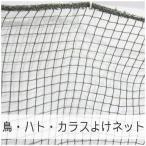 NET21ベランダ 鳥・はと・鳩・カラスよけ 防鳥ネット 巾30〜100cm 丈101〜200cm