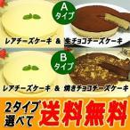 起司蛋糕 - 送料無料 人気のチーズケーキ2個お試しセット(レア・チョコ)(冷凍)( 数量限定)