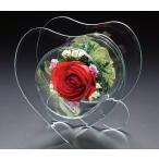 プリザーブドフラワー ピュアフラワー(バラ(赤):ハート型 p-ml-2) 母の日 誕生日 記念日 ギフト プレゼント