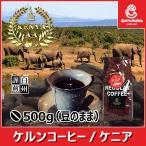 コーヒー豆 ケニア 500g(豆のまま) 自家焙煎 珈琲 珈琲豆 商品番号15860