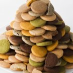豆乳おからクッキー 蒟蒻マンナン入り 訳あり 1kg 8種類のフレーバー(プレーン・胚芽・パンプキン・珈琲・ニンジン・セサミ・抹茶・ココア)