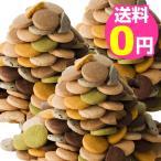 10%OFF 豆乳おからクッキー 蒟蒻マンナン入り 訳あり 3kg 8種類のフレーバー(プレーン・胚芽・パンプキン・珈琲・ニンジン・セサミ・抹茶・ココア)