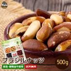 おつまみ ポイント消化 送料無料ブラジルナッツ 500g アマゾンのスーパーナッツ 産地直輸入 海外では有名な栄養価の高いナッツ!チャク付き袋 工場直販 常備食
