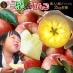 【蜜入り 葉とらずりんご ふじ2kg前後 超プレミアム】 りんご 青森産 サンふじ リンゴ 林檎 アップル 青森りんご [※産地直送のため同梱不可]「GOLD」