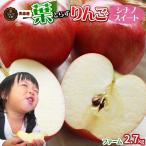 送料無料 【葉とらずりんご シナノスイート2.7kg ファーム】家庭用 (7〜12玉) [※産地直送のため同梱不可]